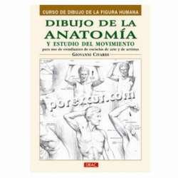Dibujo de la anatomia