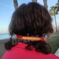 Salvaorejas con la bandera de España, salva orejas España